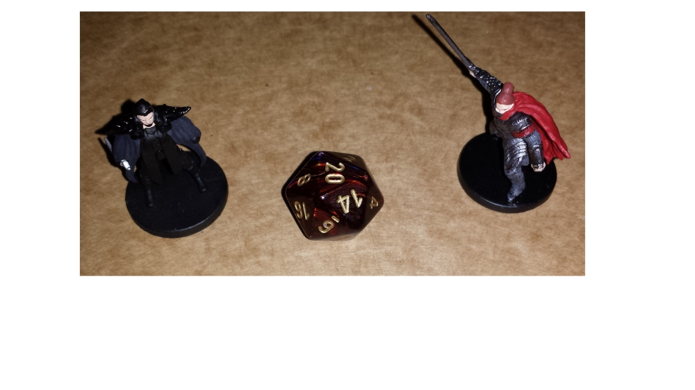 Two D&D minis and a d20