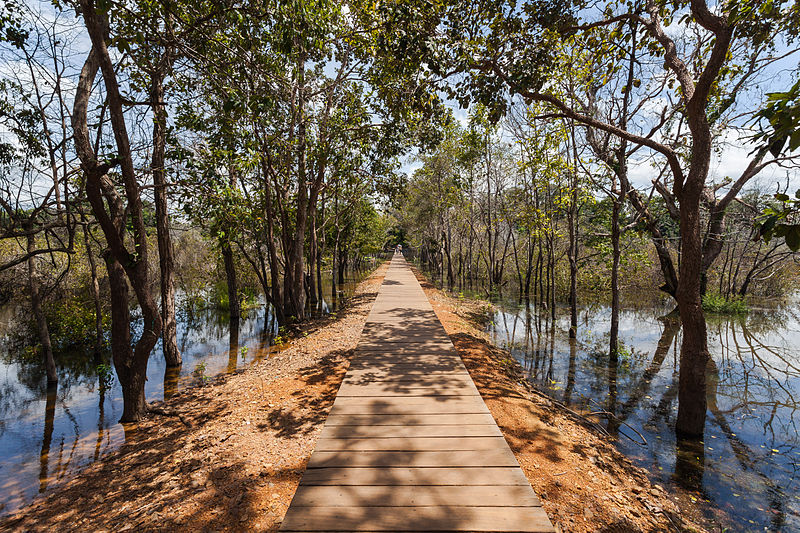 Way over a pond to reach the Khmer temple of Neak Pean, an artificial island that belongs to the Angkor temple complex, located today in Cambodia.