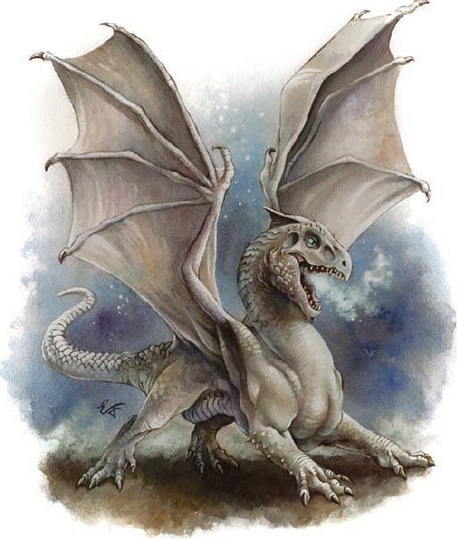 White dragon wyrmling
