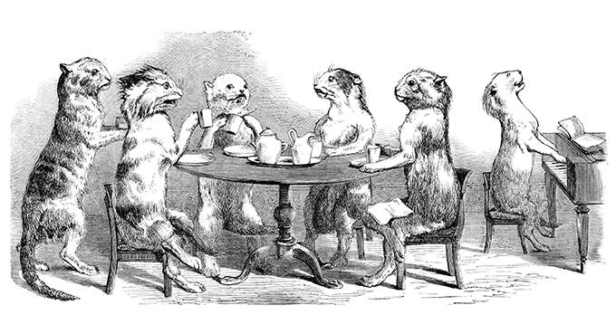 Cats are sitting around a table having tea while another plays the piano. Wood engraving.