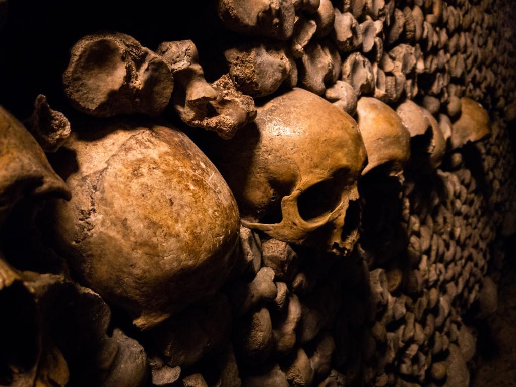 A wall of skulls