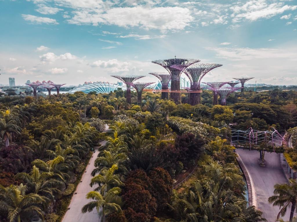 Gardens by the Bay in Singapore showing several groves of trees
