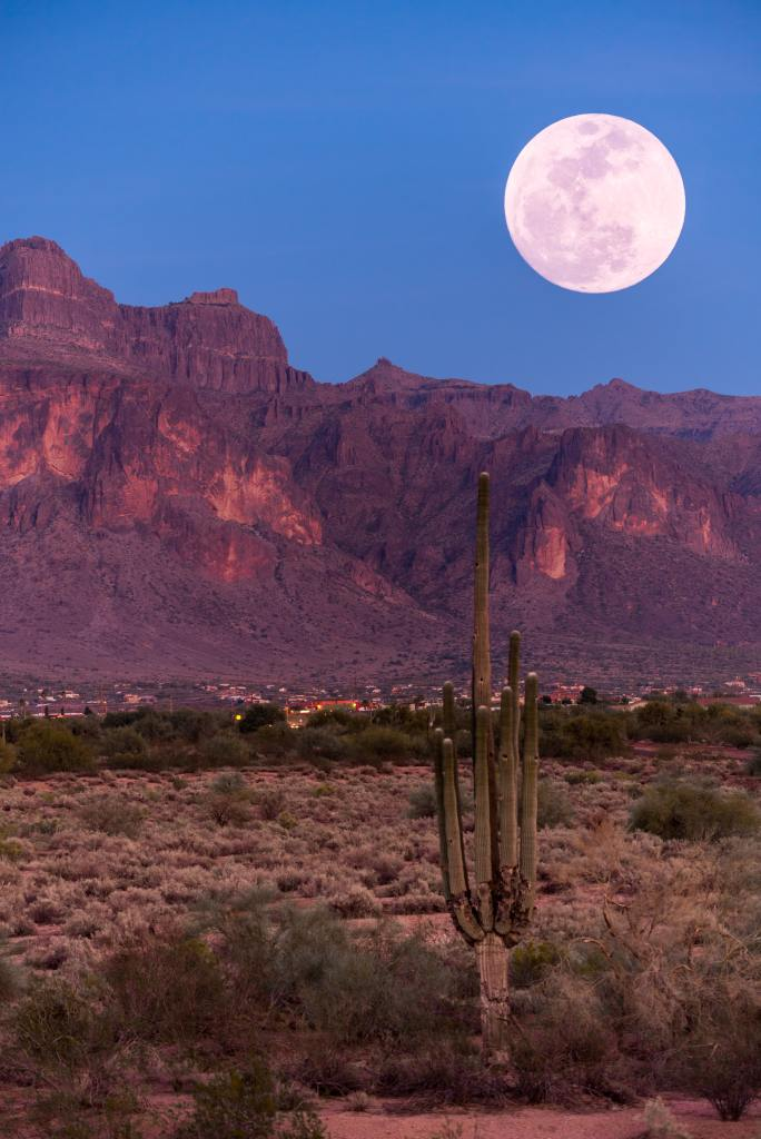 Green cactus on a green grass field, with a small town behind it and red mountains in the background under a full moon